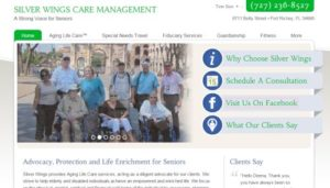 Silver Wings Care Management Site Redesign