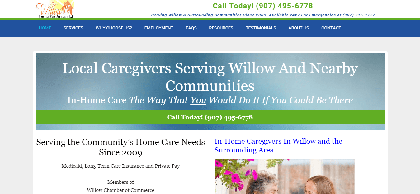 Willow Personal Care Assistants LLC - Home Page Screen Shot - Above the fold